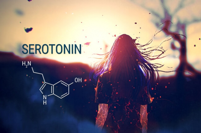 Cannabis And Serotonin: Can This Relationship Treat Anxiety?