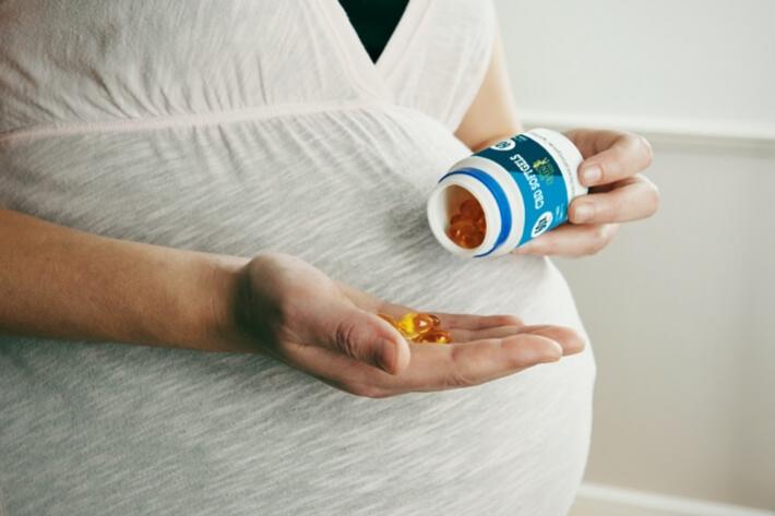 Personal Path To Pregnancy Pdf