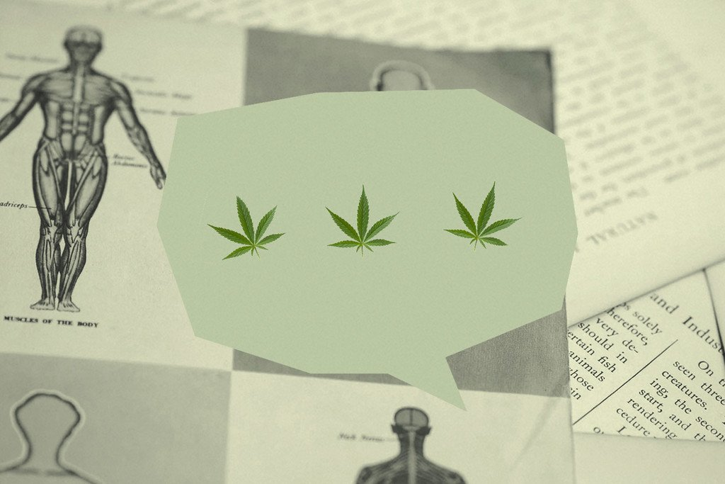 7 Tips For Talking About Medical Marijuana To Your Doctor