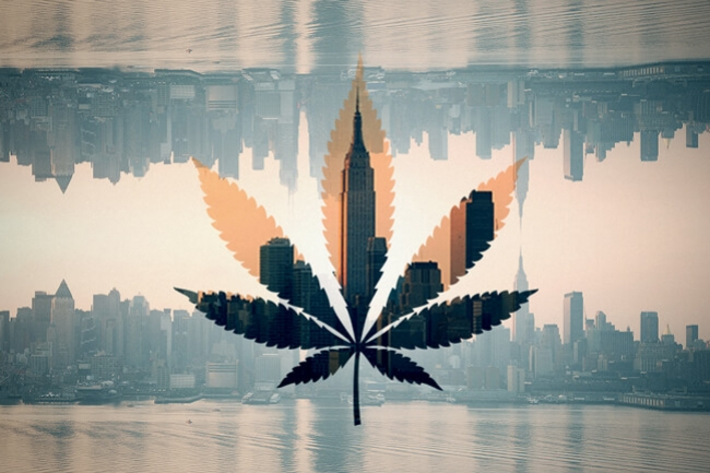 New York, the world's biggest cannabis consumer