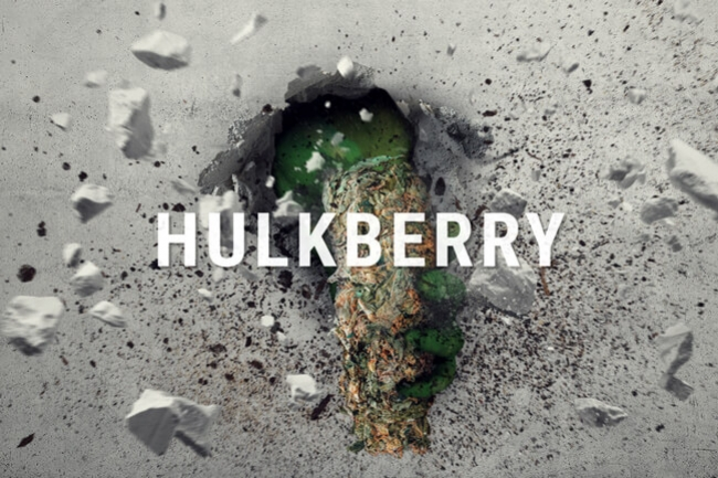 HulkBerry: The Kush With The Sativa Alter-Ego