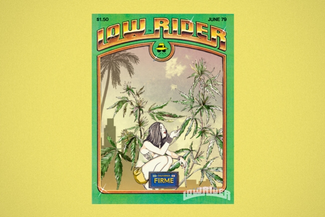 Lowryder: The First True Autoflowering World-Star Weed