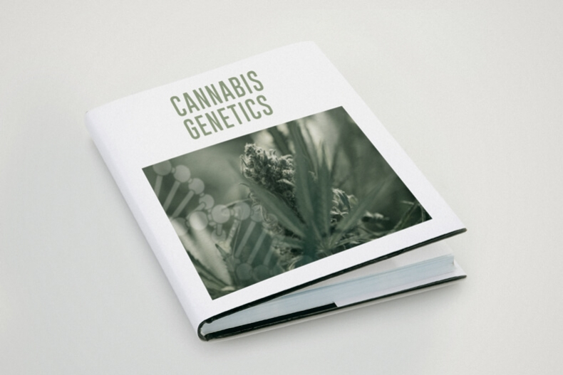 Basic Genetics Terminology For Cannabis