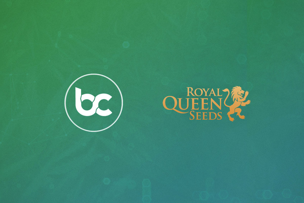The Cannabis Coin Is Coming: BitCanna Accepted At RQS