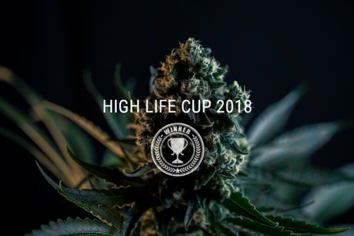 Royal Queen Seeds Wins Big At Highlife Cup 2018