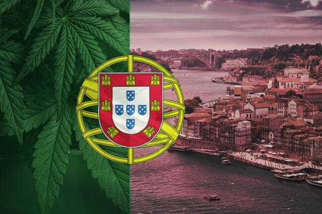Portugal Takes A Momentous Step Toward Legalizing Medical Cannabis