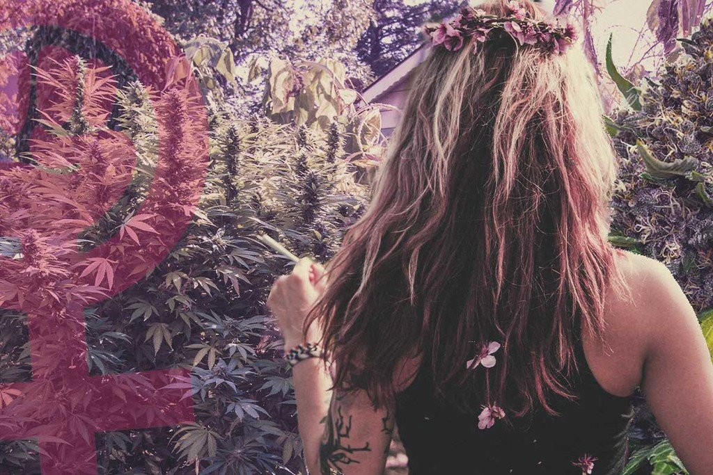 8 Of The Most Influential Women In The Cannabis Industry