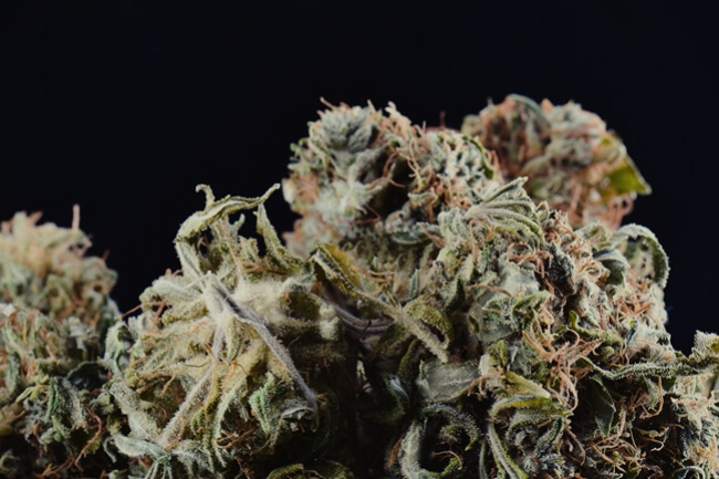 Contaminated Cannabis and How To Detect it