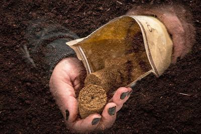 How and When to Flush Marijuana Plants - RQS Blog